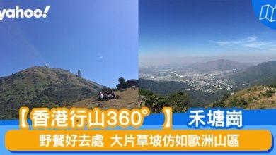 Photo of 【行山路線】360°禾塘崗:野餐好去處 大片草坡仿如歐洲山區