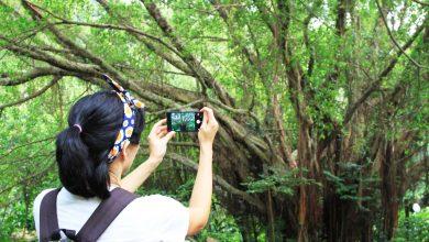 Photo of 一機在手,人人都是大師!5個讓你讚數飆升的手機拍照小技巧